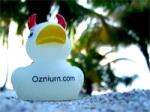 Ozzy Oznium Duck